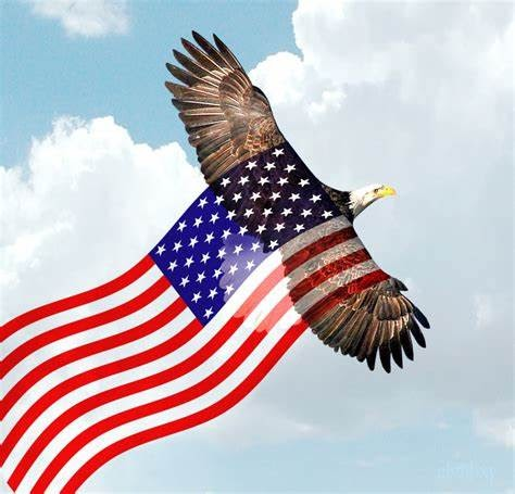 Bald-Eagle-flying-american-flag